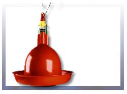 Poidła dzwonowe dla indyka firmy Plasson stary model w ofercie Polska Ferma